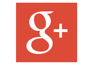 Google+3