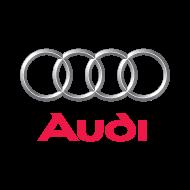 Audi Logo 190